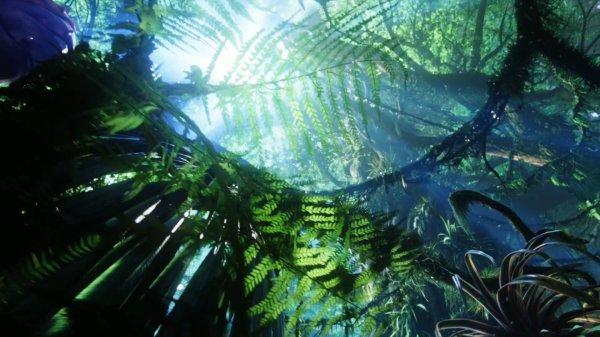 jungle pandora